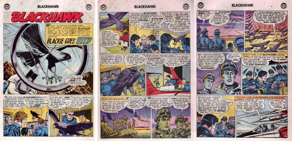 Inledande sidor ur episoden Blackie Goes Wild från Blackhawk #115 (1957). ©DC/National