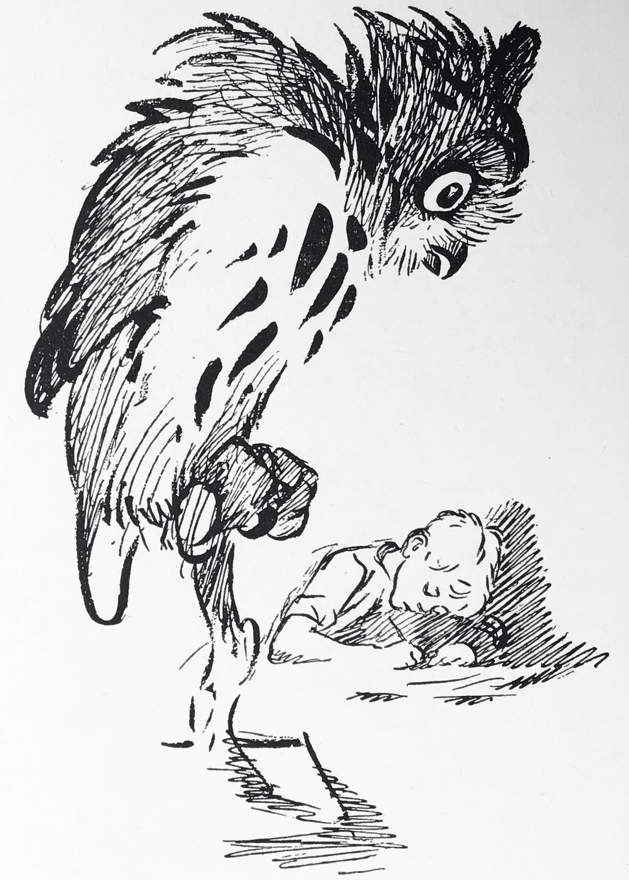 I snickarbänkens verktygslåda stod sexton svartryggade mysterieböcker och en uppstoppad uggla med ena ögat bortfallet.